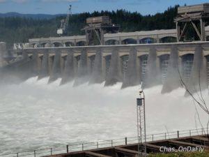 Bonneville dam 1