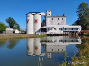 thompson mill reflection